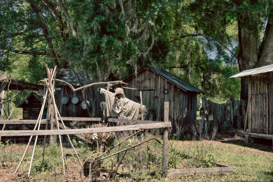 Scarecrow Florida Pioneer