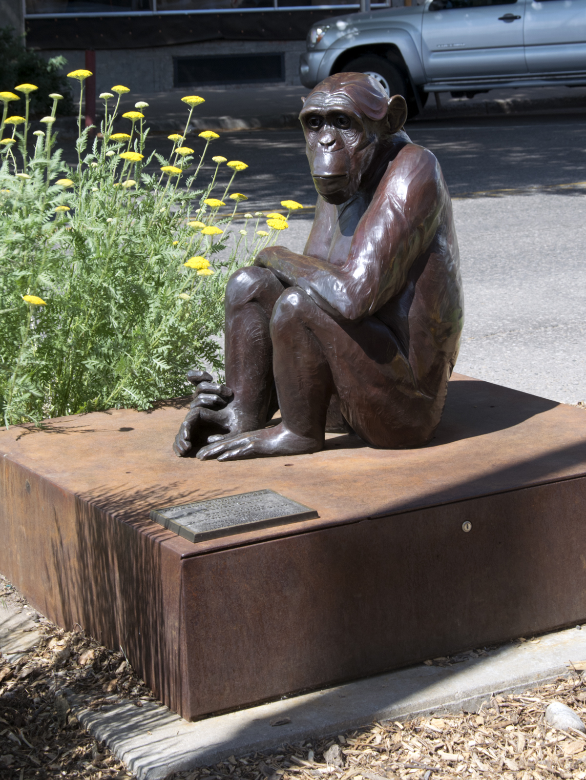Loveland Chimp Sculpture