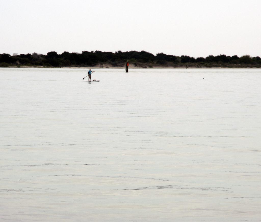 florida beach paddle board
