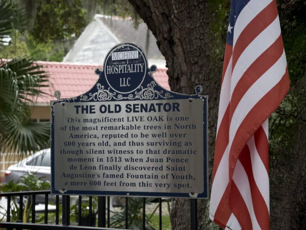 Senator St Augustine
