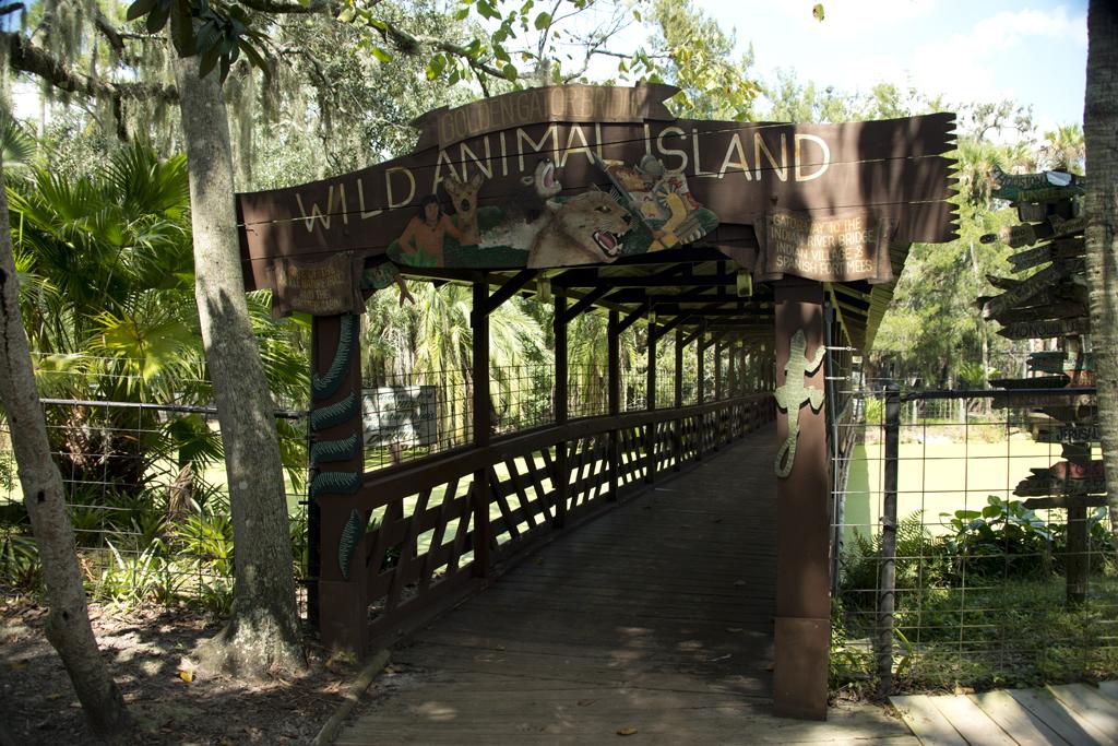 jungleadventuresbridge