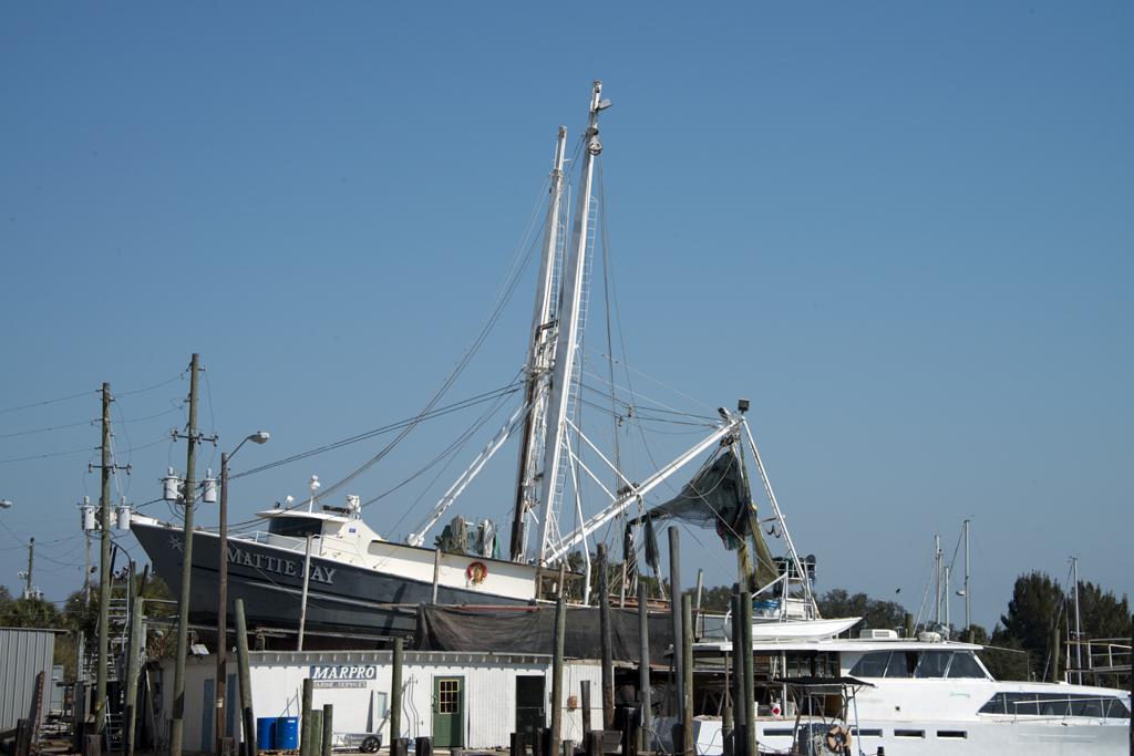 tarponboat