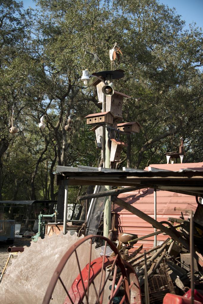 Junkyard Photography Excursion in Tampa Bay, Florida