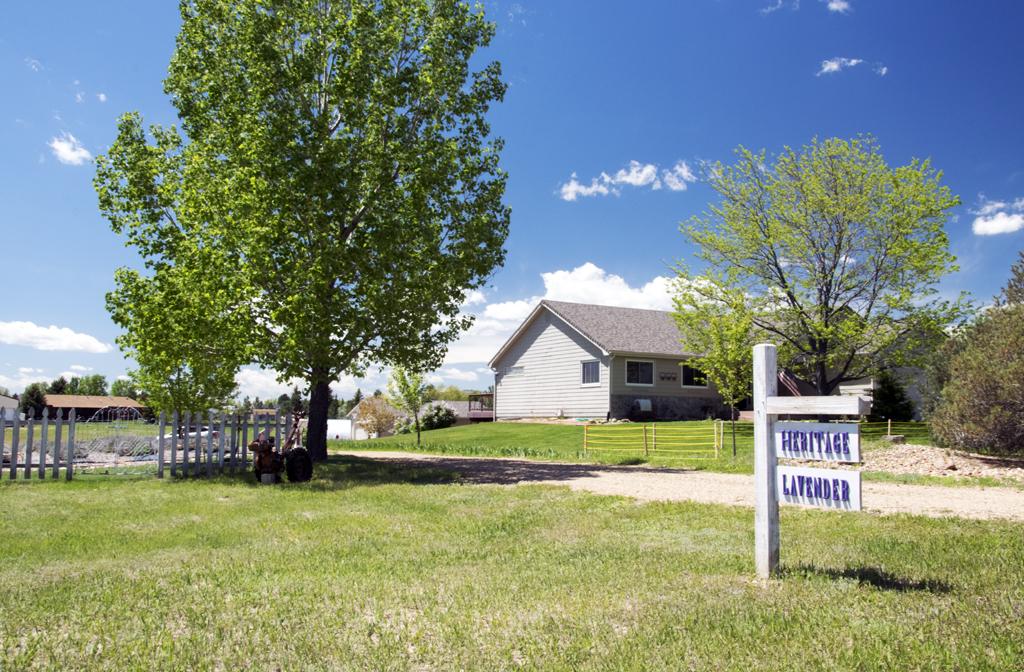 Heritage Lavender Farm, Berthoud, Colorado